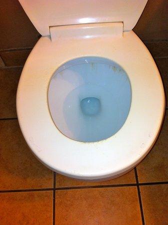 The Inn at Alamo / Riverwalk / Convention Center : dirty toilet