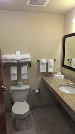 Cobblestone Inn and Suites Langdon : Very clean and organized bathroom