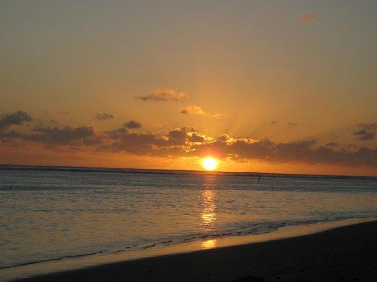 Makayla Palms: Sunset in paradise