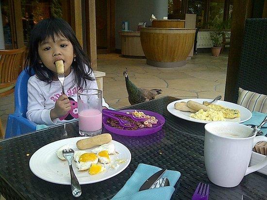 Shangri-La's Rasa Sentosa Resort & Spa: Breakfast with peacock, a Komodo also join us