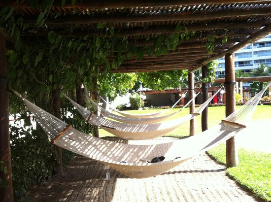 Dreams Villamagna Nuevo Vallarta: Hammocks in the Garden Terrace