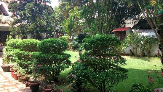 Ann's Residency: Garden
