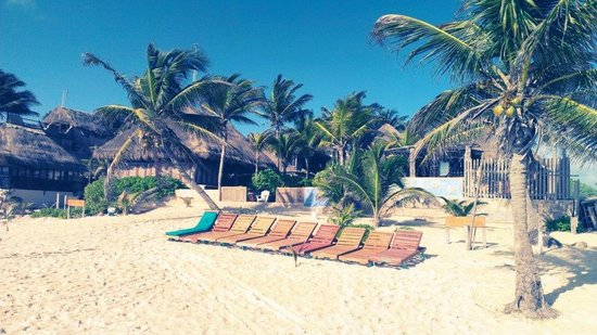 Hotel CalaLuna Tulum: View from the sea