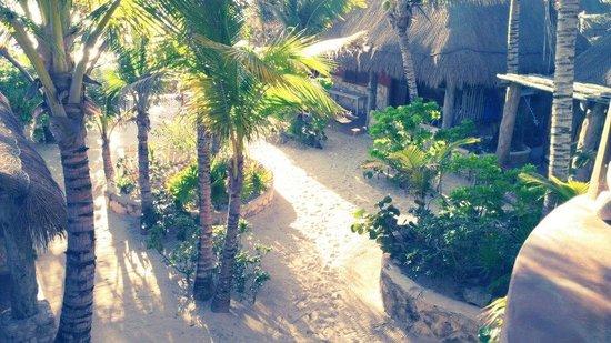 Hotel CalaLuna Tulum: View of garden and cabanas from cabana 4 balcony