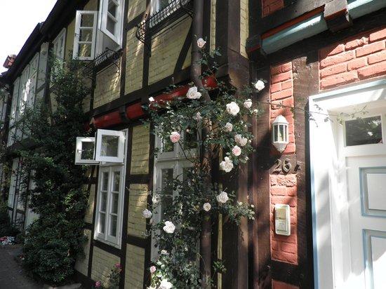 Hotel Garni St. Georg: Rosen am Fachwerk