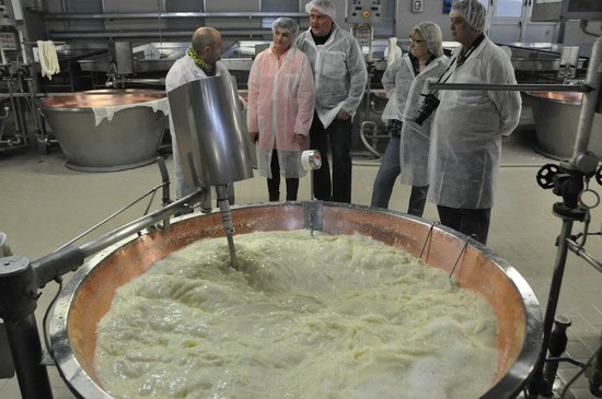 Italian Days Food Experience: See the king of cheeses being made and taste it