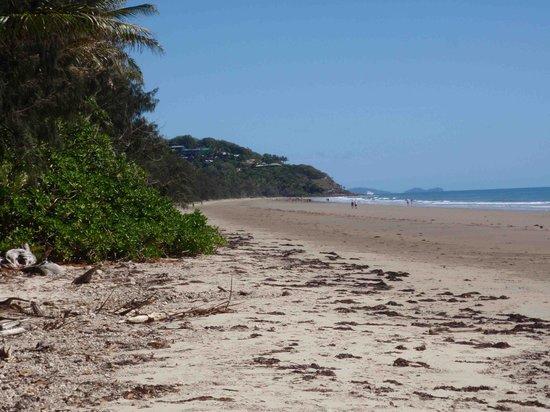 Sheraton Mirage Port Douglas Resort: Beach looking north