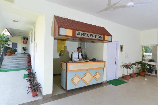 Gauriyya Tourist Complex Motel: Hotel & grounds