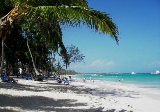Vista Sol Punta Cana : plage de l'hotel