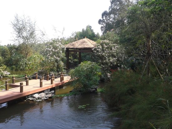 Castle Golf Hotel: Garden