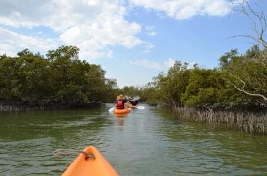 Noukhada Adventure Company: kayaking through eastern mangroves