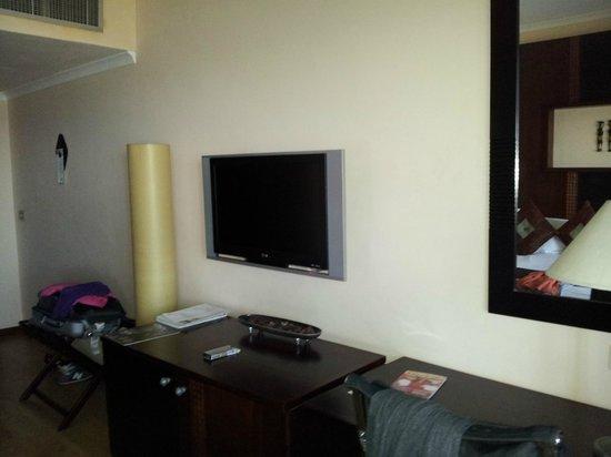 Sea Cliff Hotel: Decent size tv.