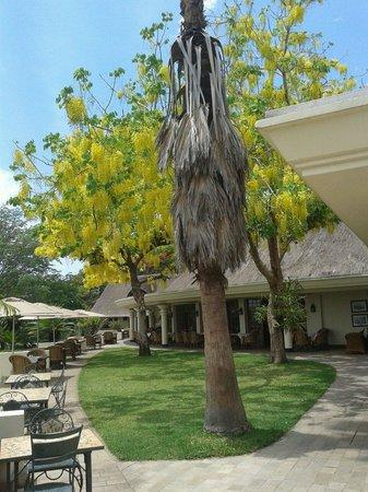 Ilala Lodge: Il giardino del ristorante