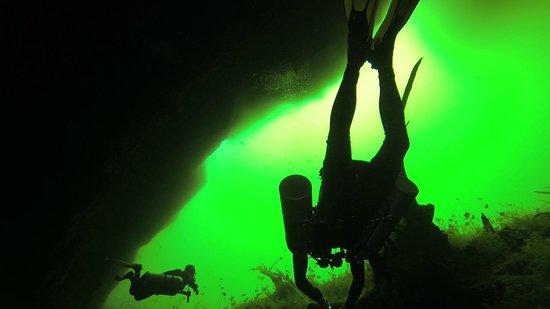 Essential Scuba Training: Diving in Carwash Cenote.