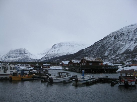 Manndalen Sjoebuer: The cabins seen from the harbour