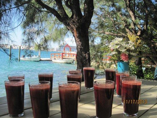 Sivananda Ashram Yoga Retreat : Delicious Homemade juice for breakfast!