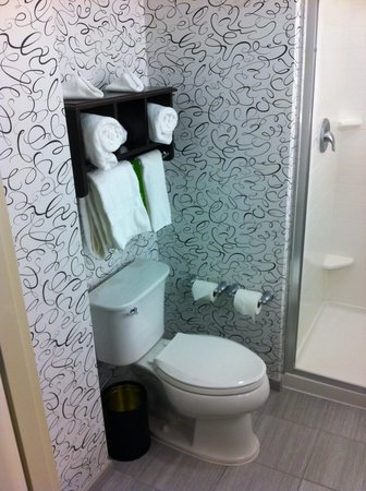 Hampton Inn Washington, D.C./White House : Bagno pulito ed elegante