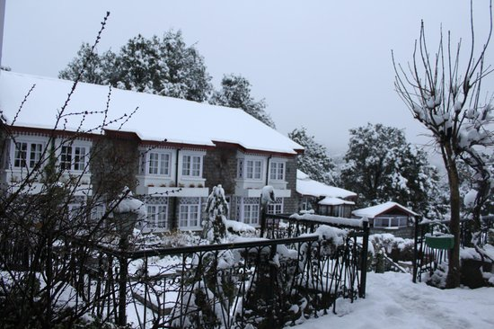 The Naini Retreat: View From Room