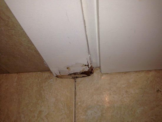 Hotel Diplomat: Bathroom door