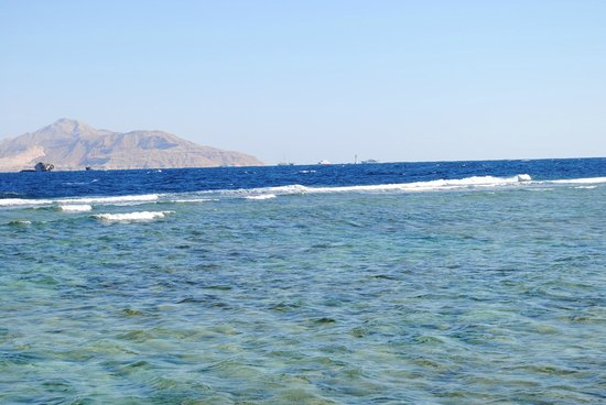 Sea Club Resort - Sharm el Sheikh: Красное море
