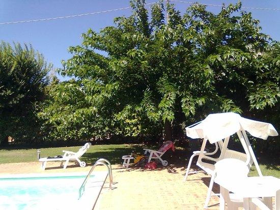 Casale Santa Caterina : relax in piscina