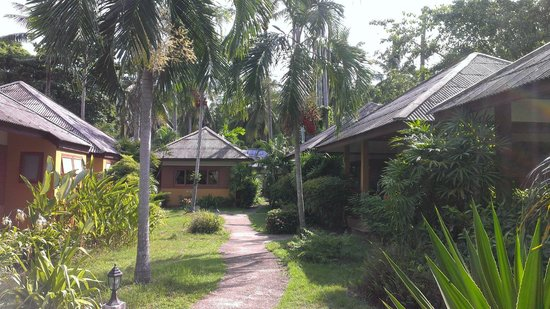 The Lipa Lovely Beach Resort: Бунгало в саду (старые номера)