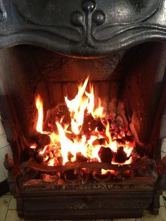 Hay Farm House Bed and Breakfast: beautiful roaring fire!