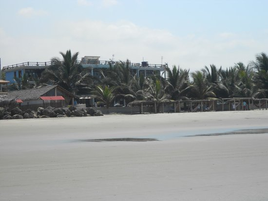 Palmazul Artisan Designed Hotel & Spa: View from the beach back to the hotel