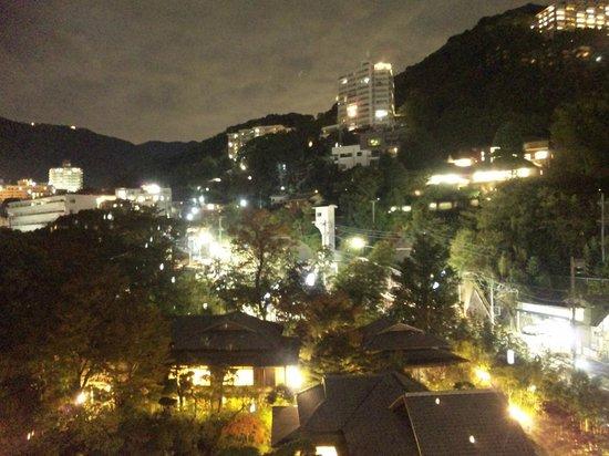 Koarashitei: 海とは反対側の客室からの眺め(夜景)