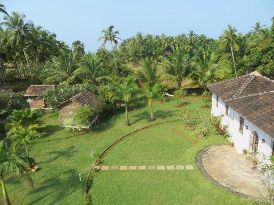 Avalon Inn : View - garden