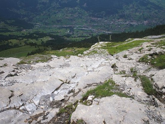 Grindelwald, Szwajcaria: View from up top