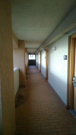 Hampton Inn Daytona Shores - Oceanfront : Hallway