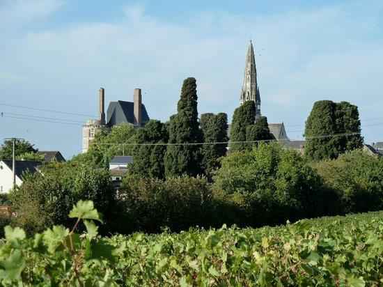 Domaine Des Deux Arcs : Skyline, paysage de Martigné-Briand, à côté du Domaine