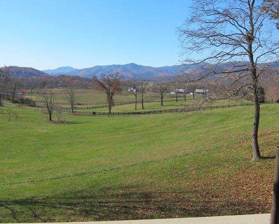 Little Washington Winery: View from deck/patio