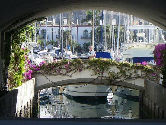 Hotel THe Puerto de Mogán: the area around marina