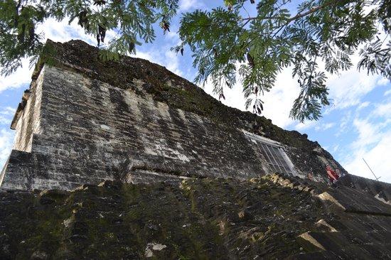 วิหารที่ 4: Temple IV