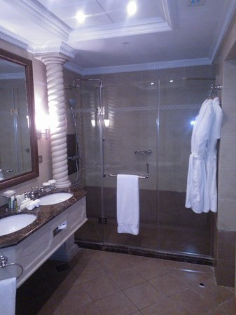 Hilton Beirut Habtoor Grand: Bathroom