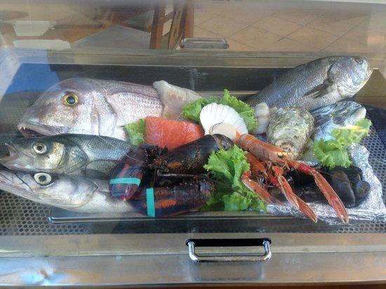 Zeri's Restaurant : Fresh seafood