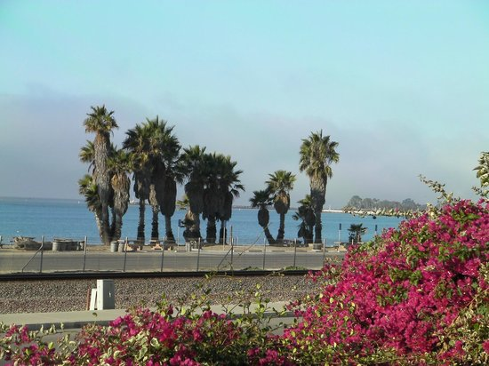 BEST WESTERN PLUS Dana Point Inn-by-the-Sea: Morning view from balcony