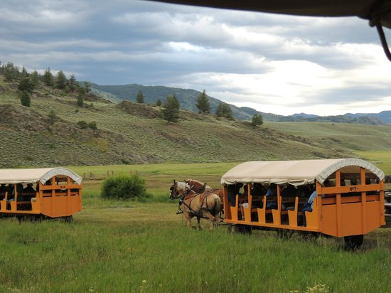 Dunraven Lodge: Chuck wagon cookout - Roosevelt