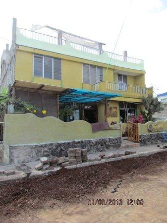 Hotel Los Cactus: Road was being re-build with interlocking bricks