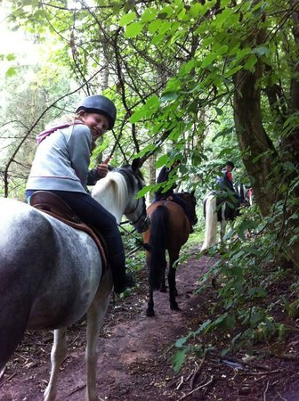 Bank House Equestrian - Private Rides