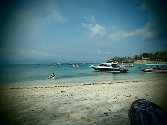The Tanis Villas : La spiaggia