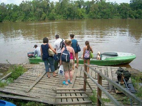 Borneo Nature Lodge : The Jetty to take us to the lodge