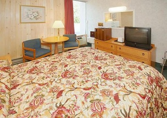 Econo Lodge Inn & Suites - Plattsburgh: Queen Size Bed