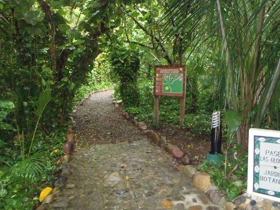 Grand Palladium Vallarta Resort & Spa: walkways