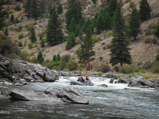 Idaho River Journeys: Rapids