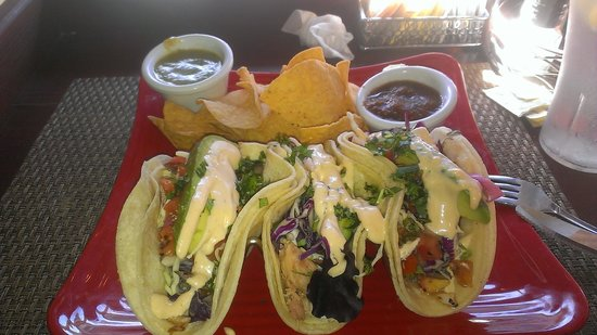 Napa Valley Burger Company: Chicken Tacos!
