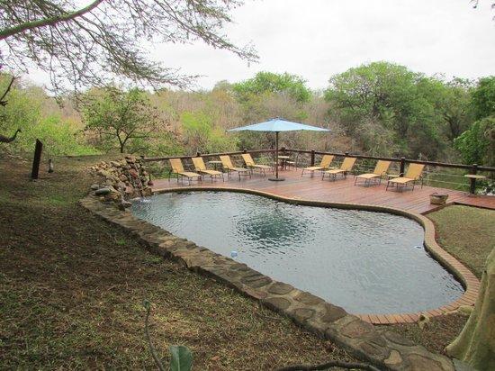 Thornybush Waterside Lodge : piscina