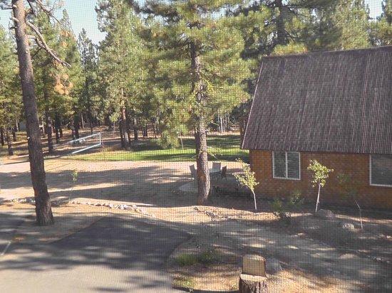 Chalet View Lodge: Ausblick